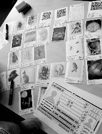 eCreative Cards set